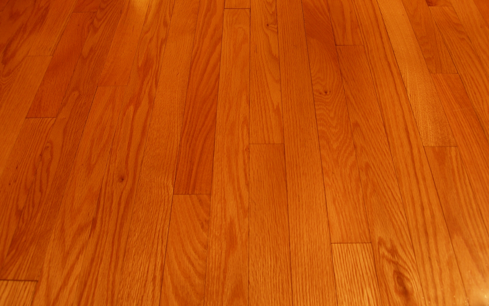 Wood floor clean magic wand carpet cleaning denver metro for Hardwood laminate