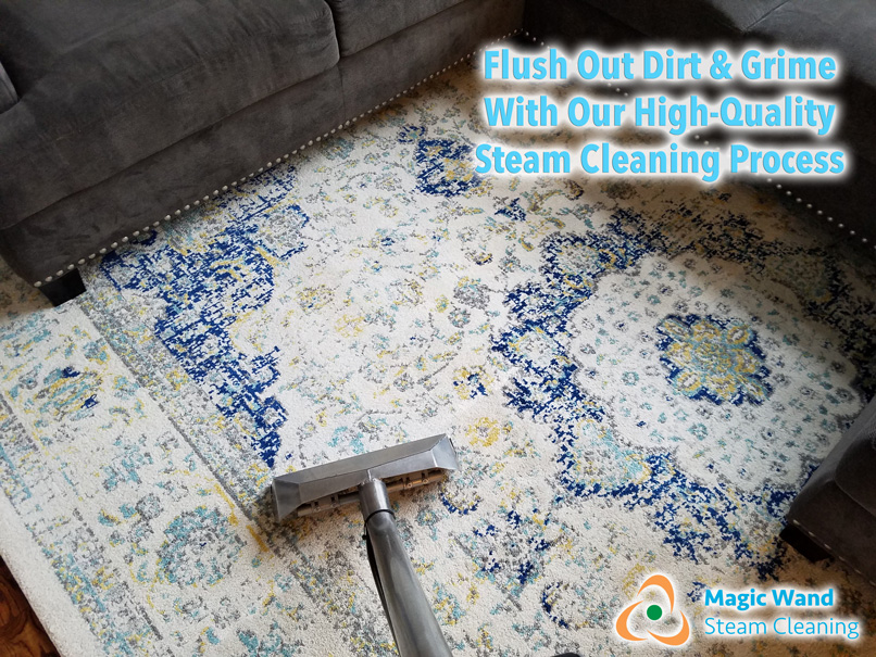 Equipment Amp Cleaning Method Magic Wand Carpet Cleaning